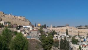 Israel Trip Bill (310)
